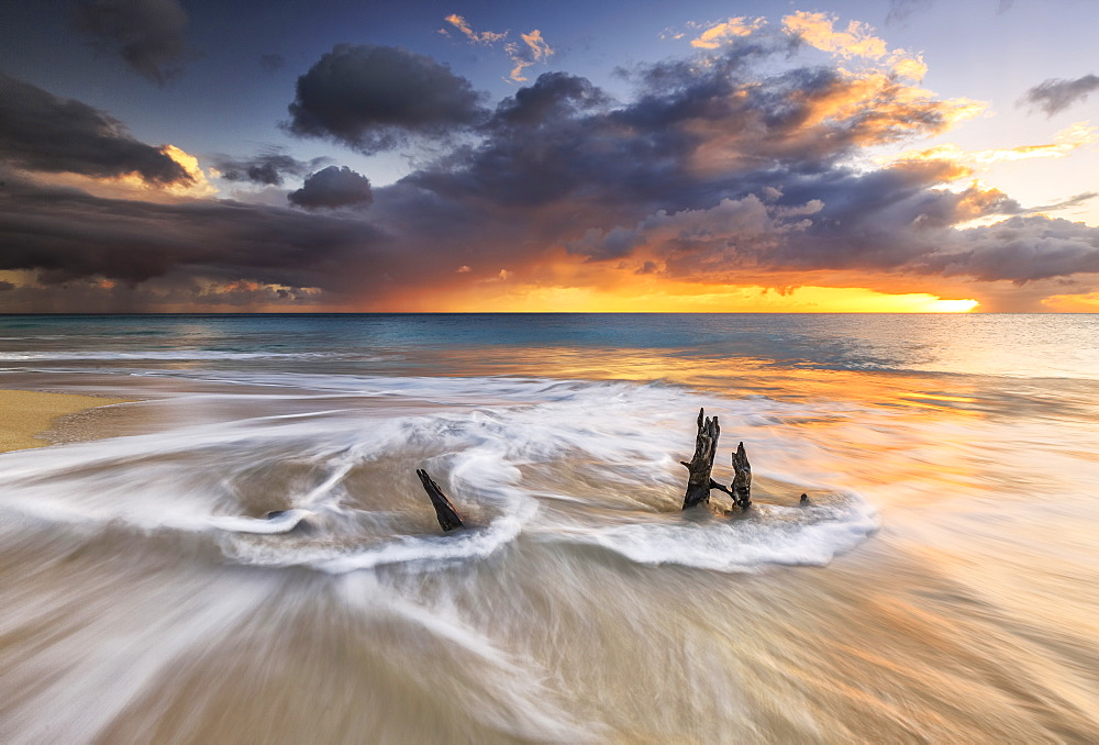 The waves and caribbean sunset frames tree trunks on Ffryes Beach, Antigua, Antigua and Barbuda, Leeward Islands, West Indies, Caribbean, Central America