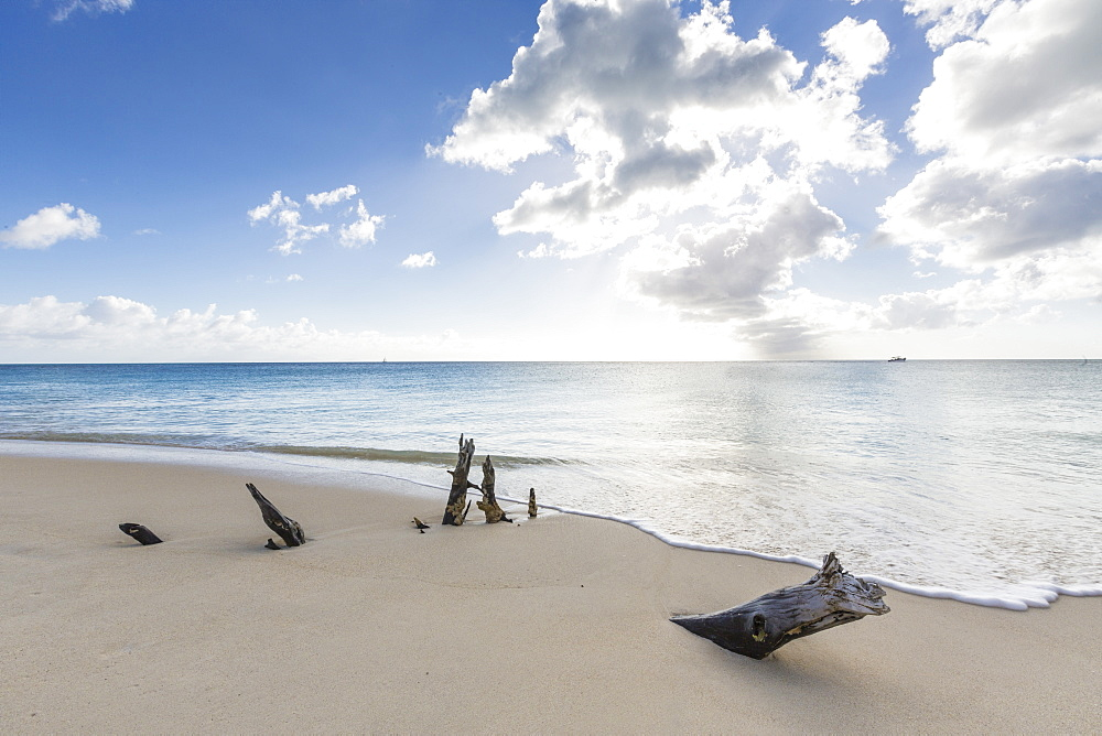 Tree trunks on the beach framed by the crystalline Caribbean Sea, Ffryes Beach, Antigua, ntigua and Barbuda, Leeward Islands, West Indies, Caribbean, Central America