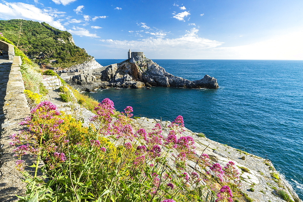 Flowers and blue sea frame the old castle and church on the promontory, Portovenere, UNESCO World Heritage Site, La Spezia Province, Liguria, Italy, Europe