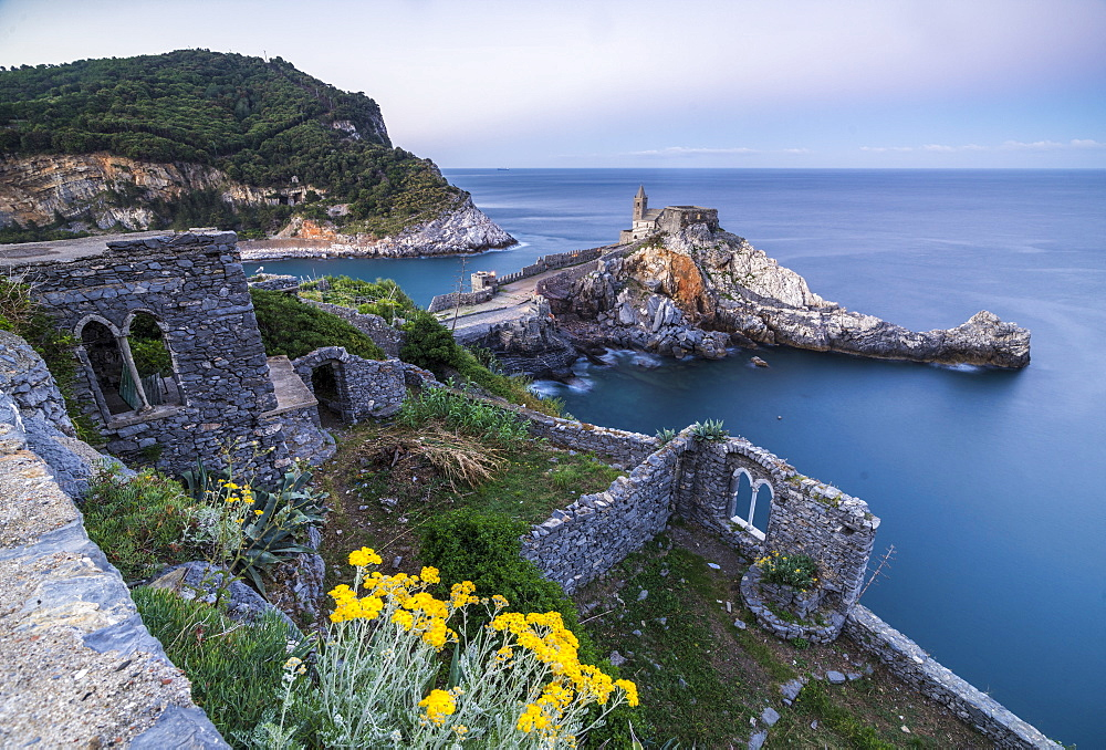 Flowers and blue sea frame the old castle and church at dawn, Portovenere, UNESCO World Heritage Site, La Spezia Province, Liguria, Italy, Europe