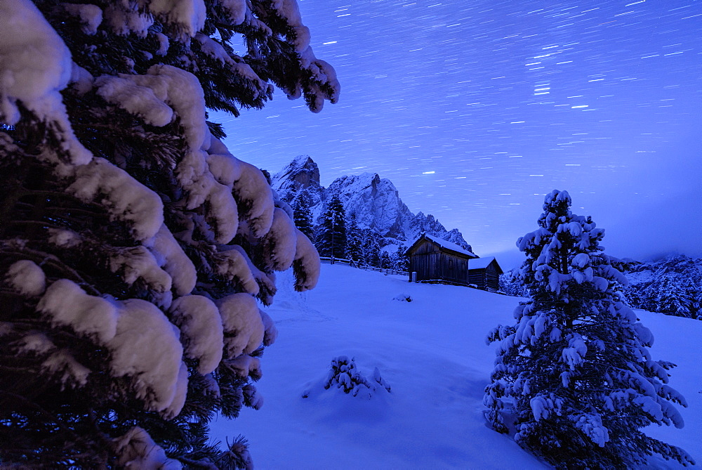 Star trail and snowy trees frame the wooden hut and Sass De Putia Passo Delle Erbe Funes Valley South Tyrol Italy Europe