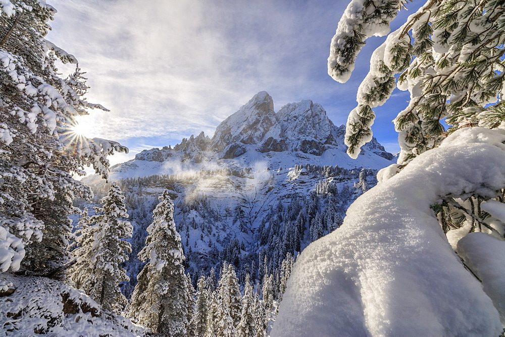 The sun illuminates the snowy trees and Sass De Putia in the background Passo Delle Erbe Funes Valley South Tyrol Italy Europe