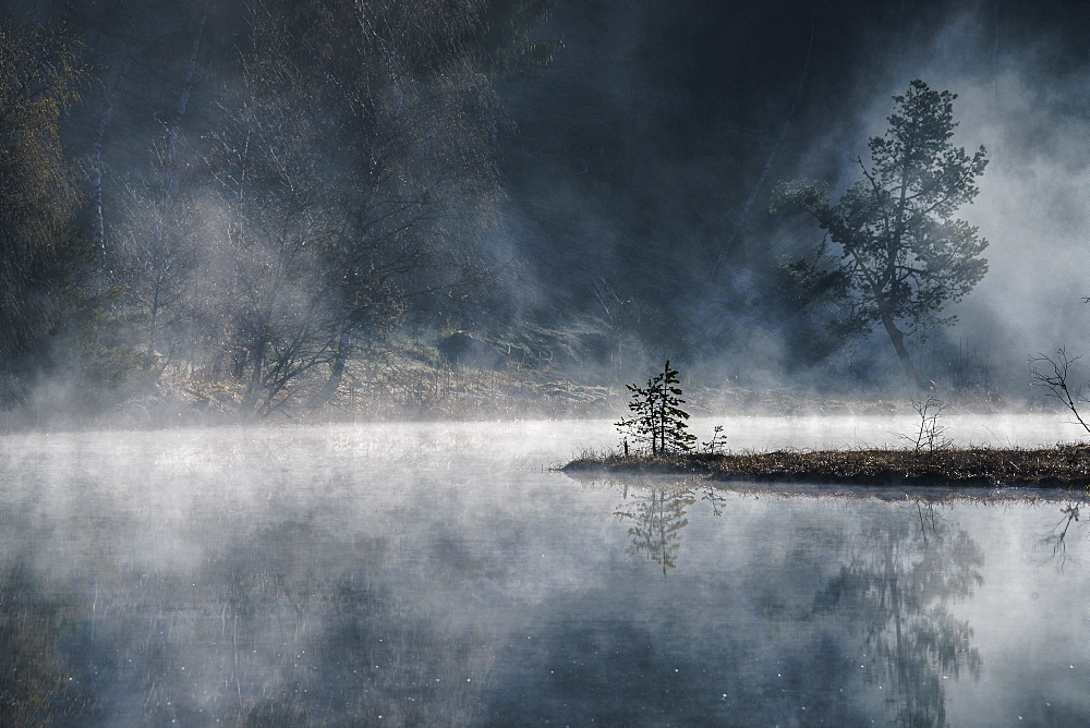 The gloomy atmosphere created by the sun illuminating the mist rising from the ponds of the Nature Reserve of Pian di Gembro, Lombardy, Italy, Europe