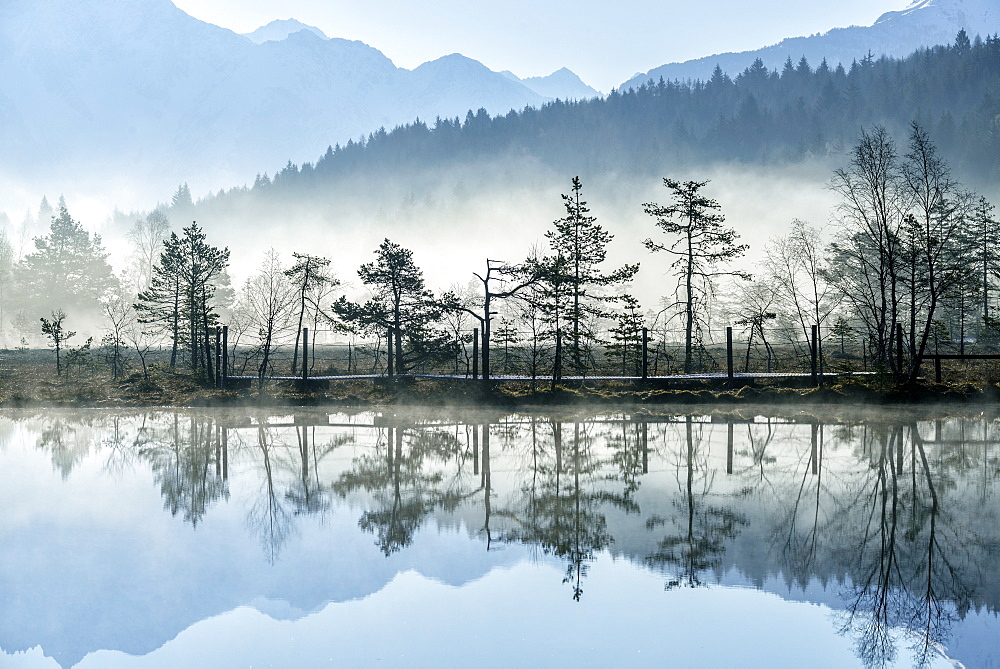 The sun illuminating the mist rising from the ponds of the Nature Reserve of Pian di Gembro early in the morning, Lombardy, Italy, Europe