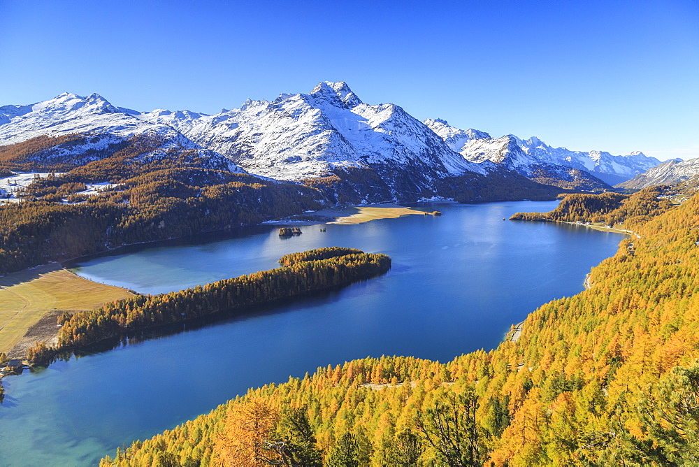Autumn approaching at Lake Sils near St.Moritz in Engadine, where Piz la Margna is already covered in snow, Graubunden, Swiss Alps, Switzerland, Europe