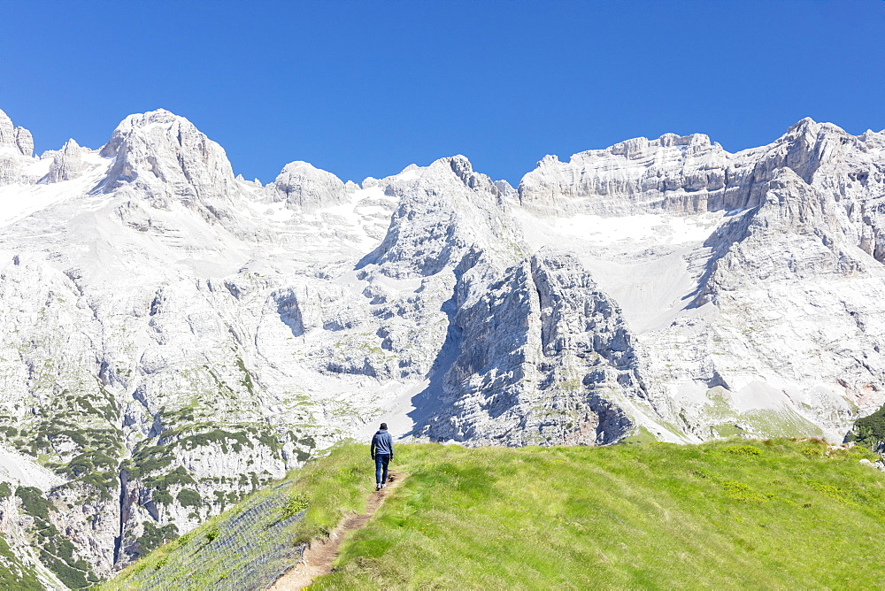 Hiker proceeds on the path to the rocky peaks Doss Del Sabion Pinzolo Brenta Dolomites Trentino Alto Adige Italy Europe