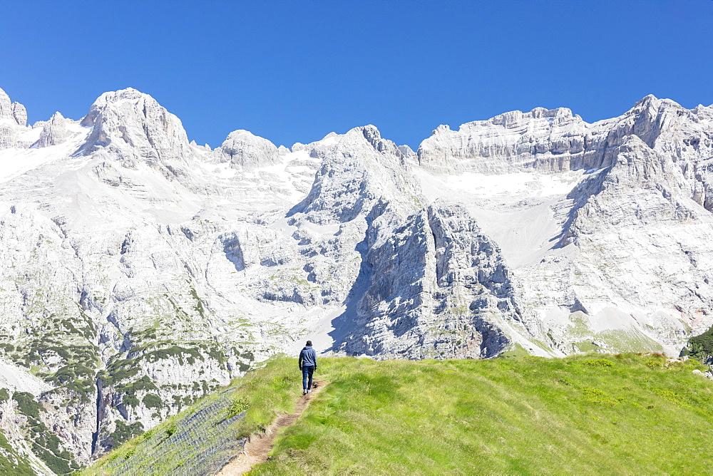 Hiker proceeds on the path to the rocky peaks, Doss Del Sabion, Pinzolo, Brenta Dolomites, Trentino-Alto Adige, Italy, Europe