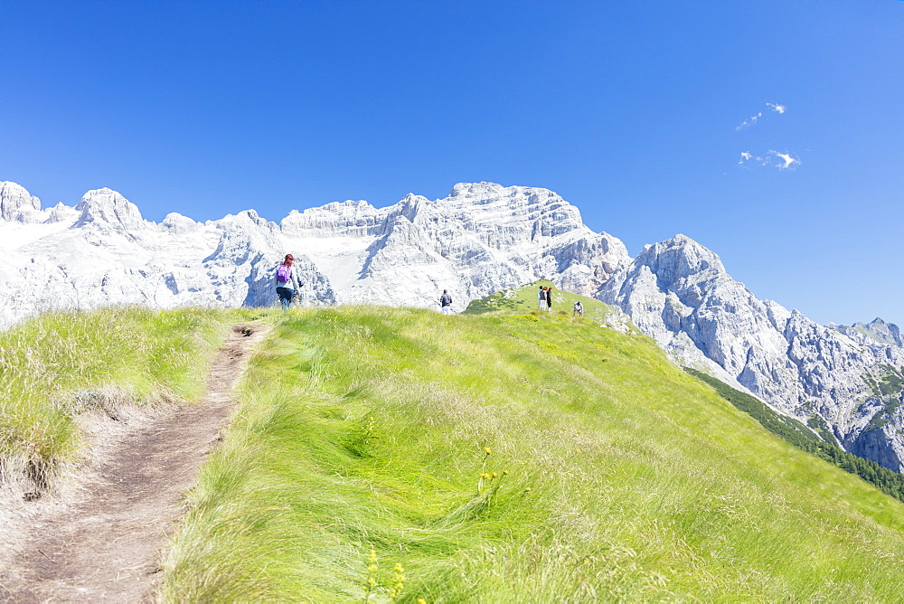 Hikers proceed on the path to the rocky peaks Doss Del Sabion Pinzolo Brenta Dolomites Trentino Alto Adige Italy Europe