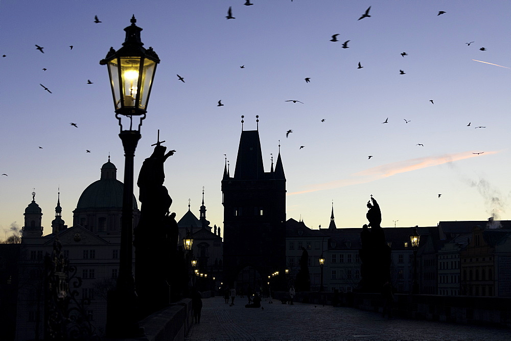 A flock of birds flies on the historical Charles Bridge on Vltava River at dawn, UNESCO World Heritage  Site, Prague, Czech Republic, Europe