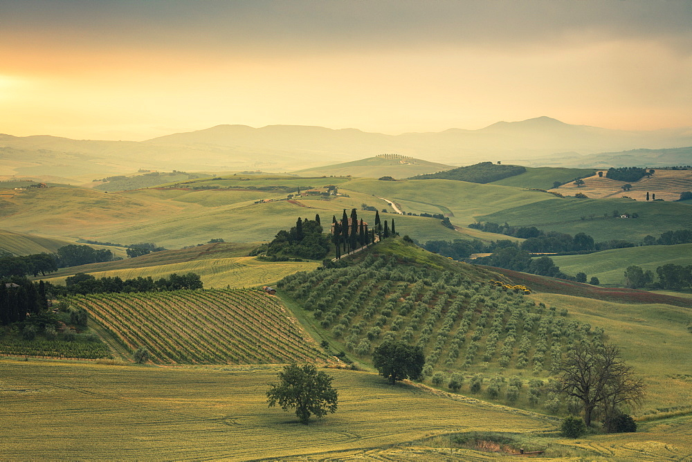 Sunrise on the gentle green hills of Val d'Orcia, UNESCO World Heritage Site, Province of Siena, Tuscany, Italy, Europe