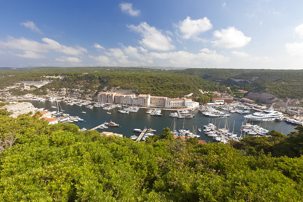 Green vegetation frames the medieval town and harbour, Bonifacio, Corsica, France, Mediterranean, Europe