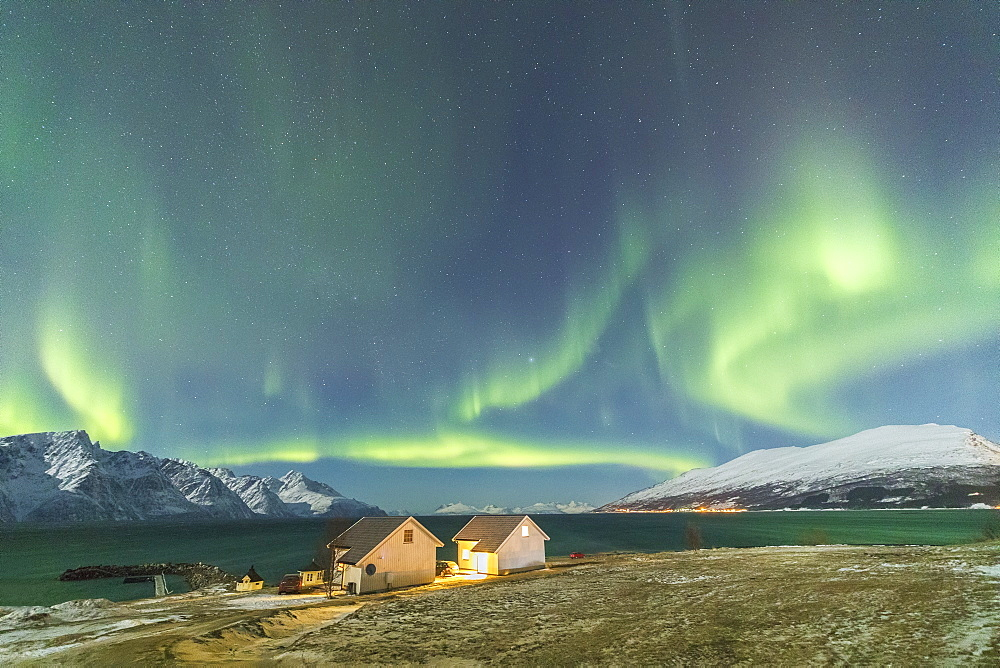 The Northern Lights (aurora borealis) and stars illuminate the wood houses called Rorbu by the sea, Djupvik, Lyngen Alps, Troms, Norway, Scandinavia, Europe