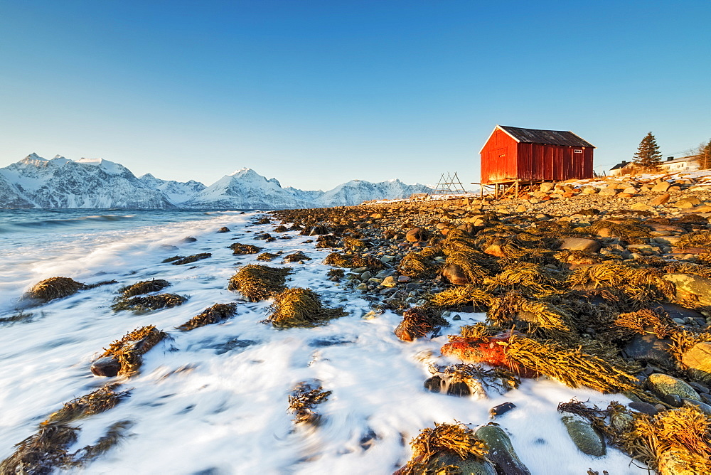 Typical wooden hut called Rorbu surrounded by waves of the cold sea and snowy peaks Djupvik Lyngen Alps Tromsø Norway Europe