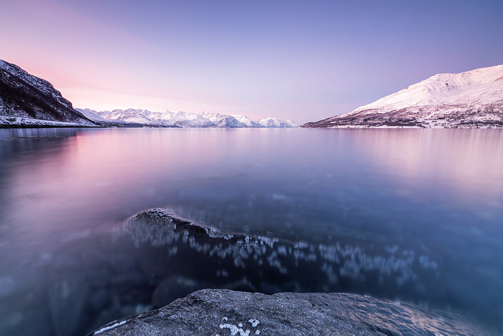 Pink sky and snowy peaks reflected in the frozen sea at sunset, Manndalen, Kafjord, Lyngen Alps, Troms, Norway, Scandinavia, Europe