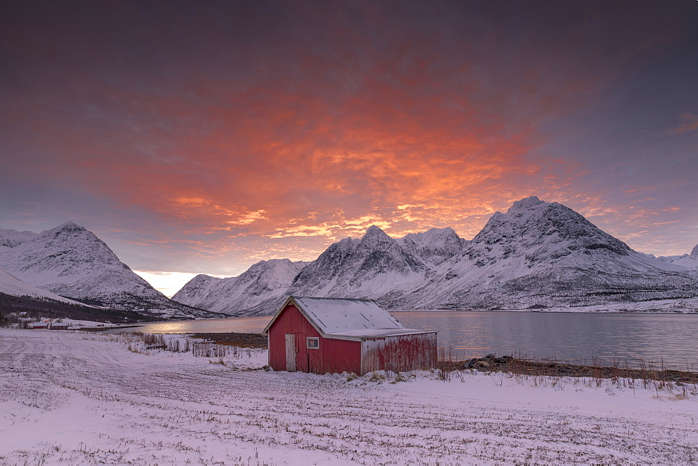 Pink clouds at dawn on the wooden hut surrounded by frozen sea and snowy peaks, Svensby, Lyngen Alps, Troms, Norway, Scandinavia, Europe