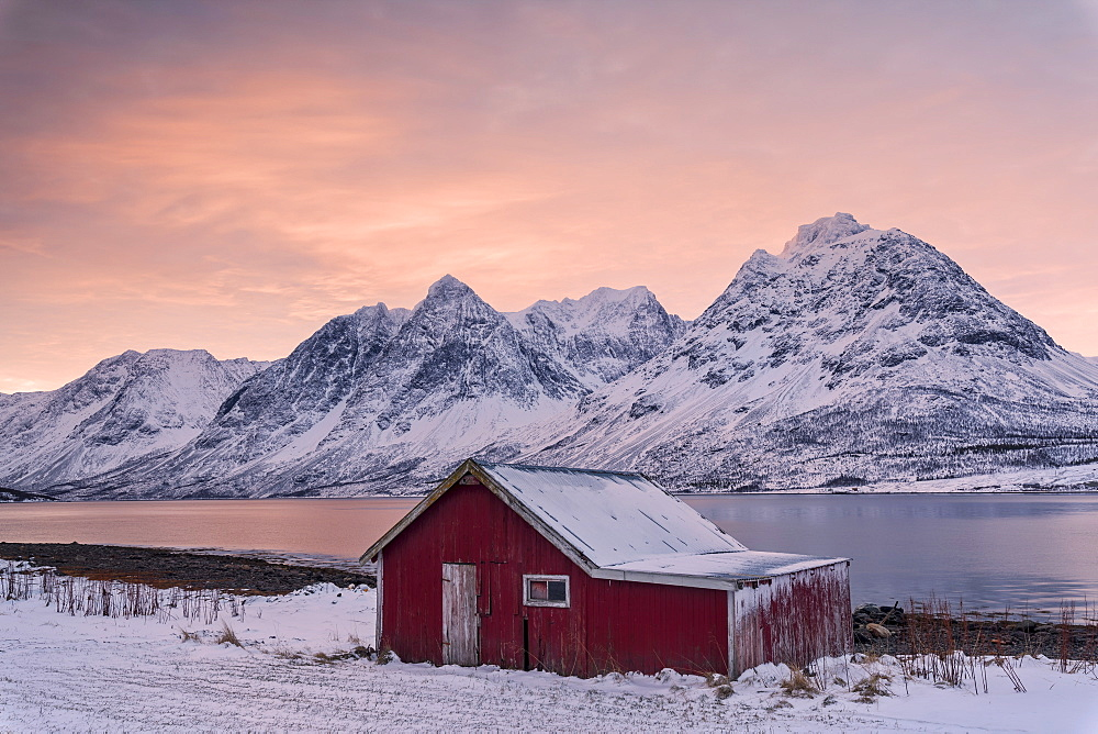 Pink clouds at dawn on the wooden hut surrounded by frozen sea and snowy peaks Svensby Lyngen Alps Tromsø Norway Europe