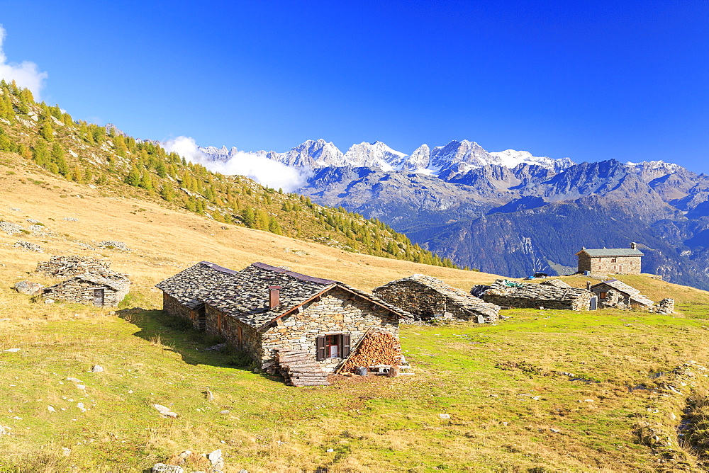 Alpine huts framed by snowy peaks of Bernina Group, Arcoglio Alp, Val Torreggio, Malenco Valley, Valtellina, Lombardy, Italy, Europe - 1179-2236