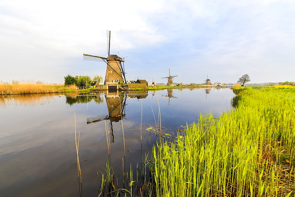 Dawn on windmills reflected in the canal surrounded by green meadows, Kinderdijk, UNESCO World Heritage Site, Molenwaard, South Holland, The Netherlands, Europe