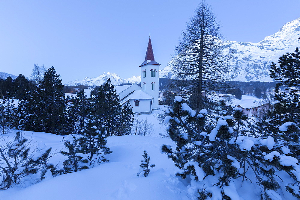 Blue lights of dusk on Chiesa Bianca framed by snowy trees, Maloja Pass, Engadine, Canton of Graubunden, Switzerland, Europe