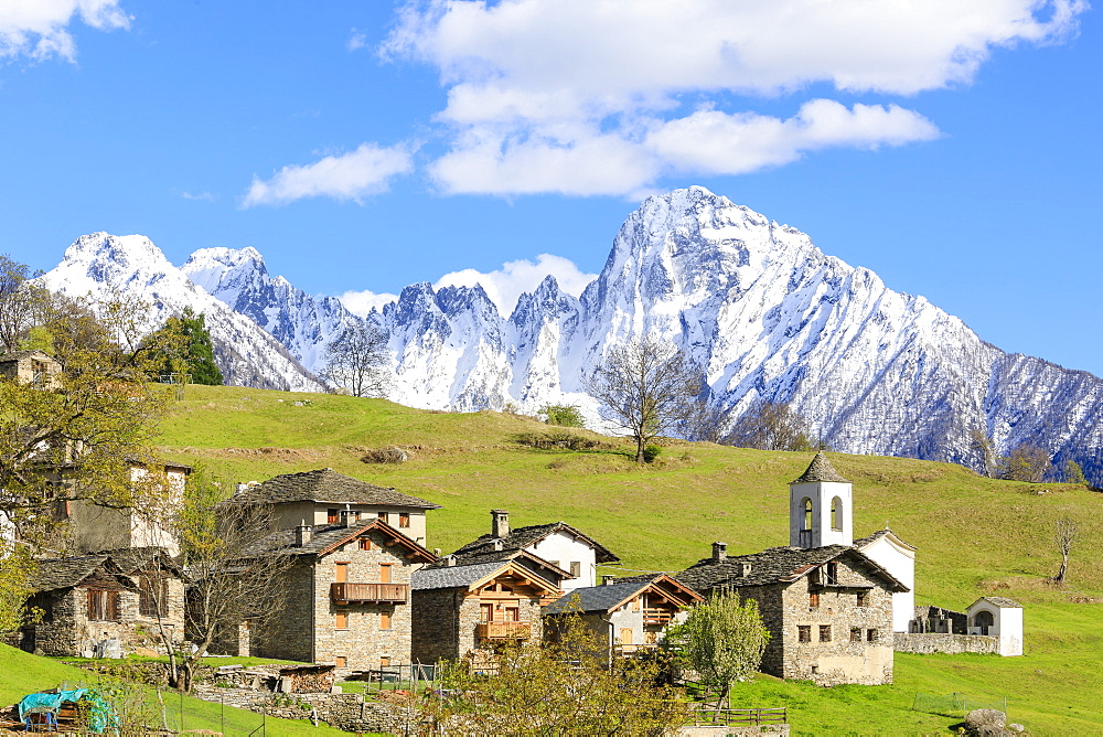 Alpine village and meadows framed by the snowy peak of Pizzo di Prata, Daloo, Chiavenna Valley, Valtellina, Lombardy, Italy, Europe