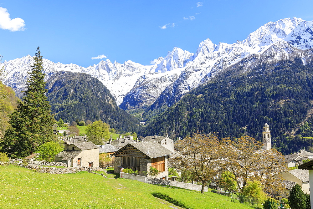 View of Soglio between meadows and snowy peaks in spring, Maloja, Bregaglia Valley, Engadine, canton of Graubunden, Switzerland, Europe - 1179-2268