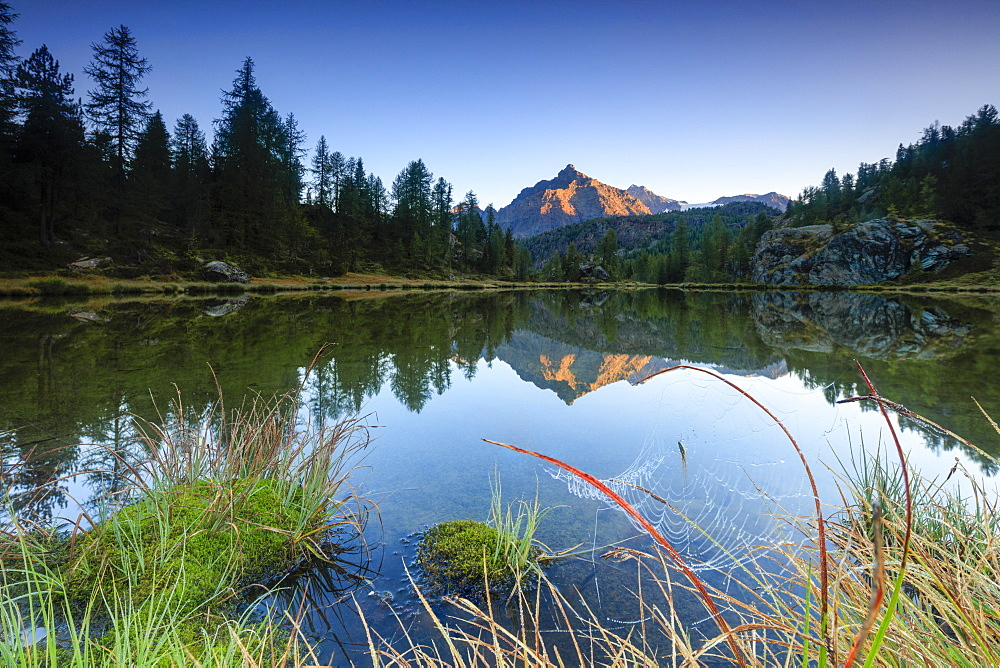 Rocky peak of Sasso Moro reflected in Lake Mufule at dawn, Malenco Valley, Province of Sondrio, Valtellina, Lombardy, Italy, Europe