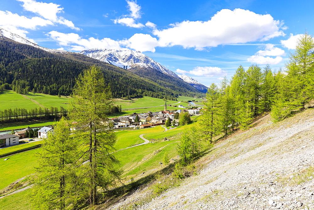 Alpine village of S-chanf surrounded by green meadows in spring, canton of Graubünden, Maloja Region, Switzerland, Europe - 1179-2381