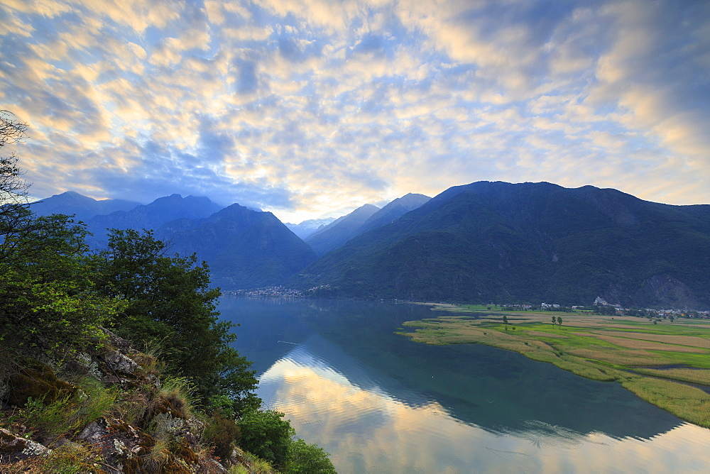 Sunrise on the Natural Reserve of Pian di Spagna, Dascio, province of Como, Chiavenna Valley, Lower Valtellina, Lombardy, Italy, Europe