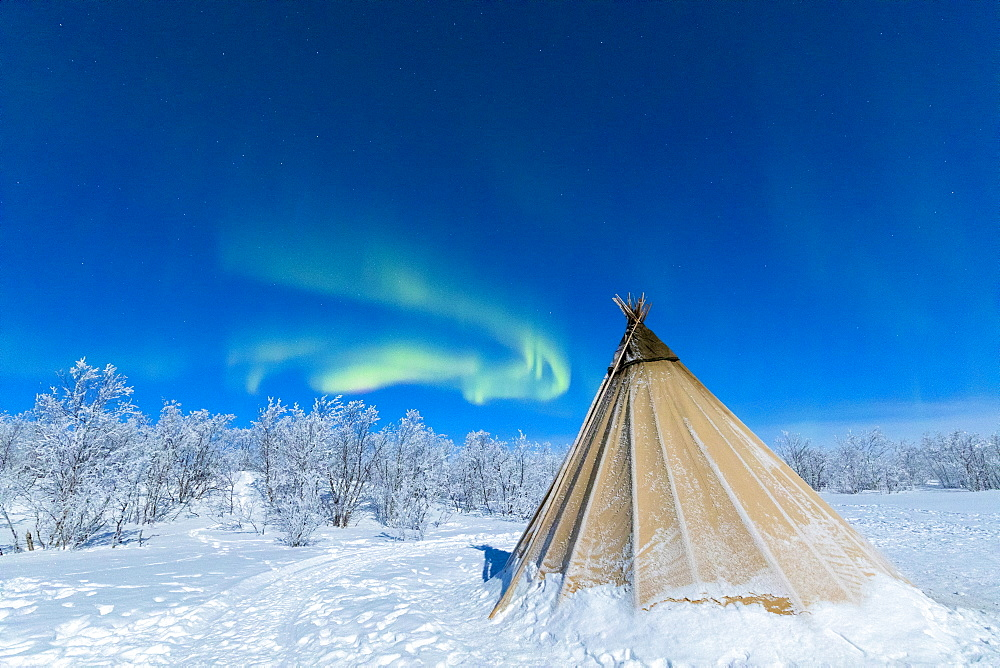 Isolated Sami tent in the snow under Northern Lights (Aurora Borealis), Abisko, Kiruna Municipality, Norrbotten County, Lapland, Sweden, Scandinavia, Europe - 1179-2495