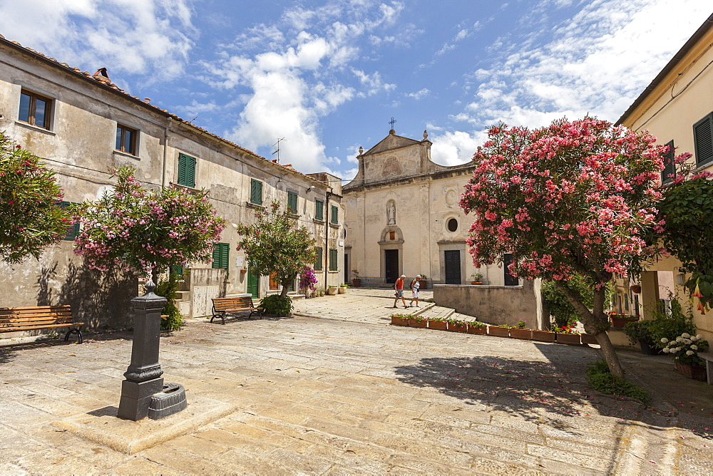 Church of Sant'Ilario in Campo, Elba Island, Livorno Province, Tuscany, Italy - 1179-2603