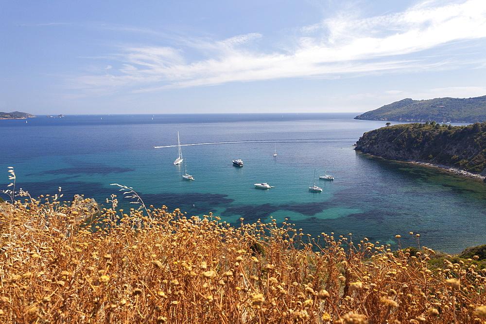Sailboats in the turquoise sea, Sant'Andrea Beach, Marciana, Elba Island, Livorno Province, Tuscany, Italy, Europe