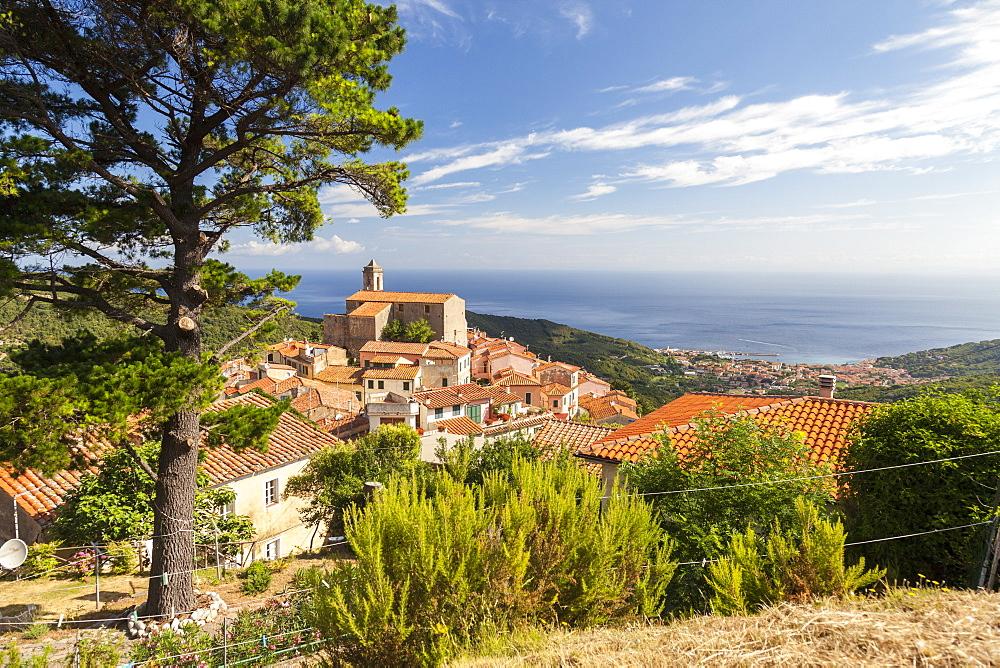 Village of Poggio on the hills of Monte Capanne, Marciana, Elba Island, Livorno Province, Tuscany, Italy - 1179-2659