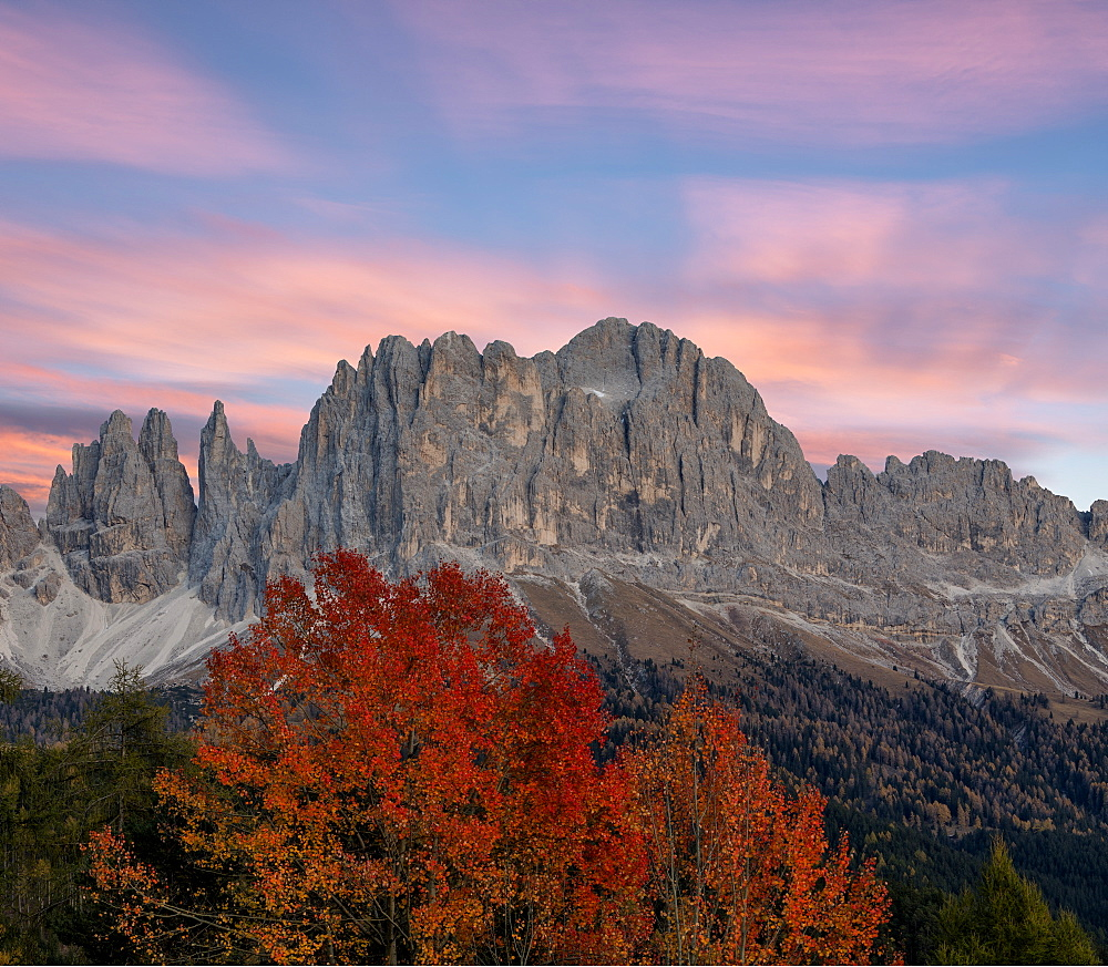 Sunrise on Catinaccio Rosengarten and Torri Del Vajolet in autumn, Tires Valley, Dolomites, South Tyrol, Bolzano province, Italy, Europe