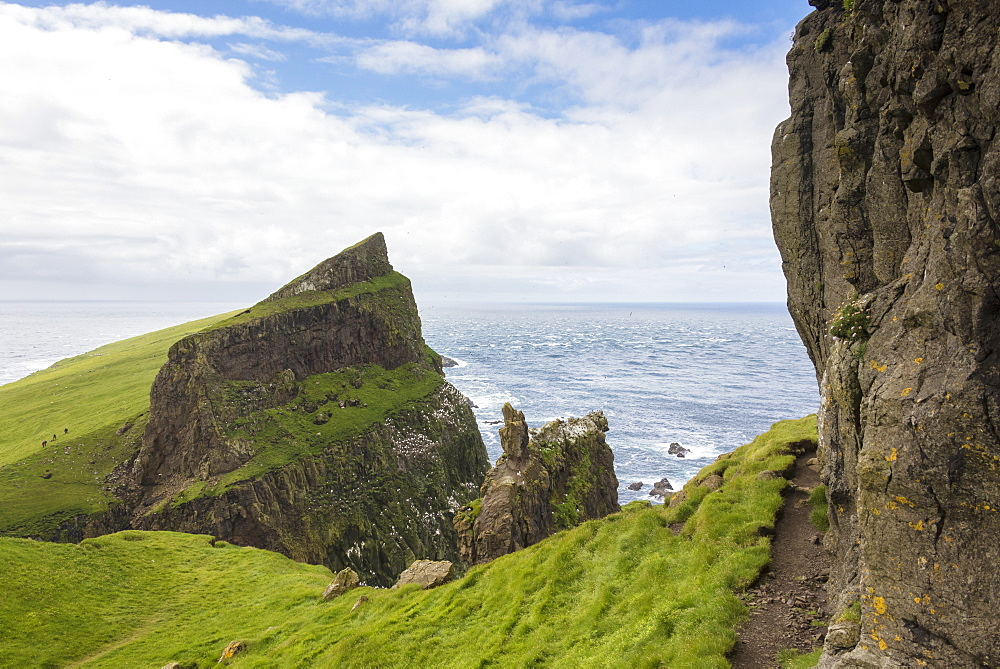 Cliffs overlooking the ocean, Mykines Island, Faroe Islands, Denmark, Europe