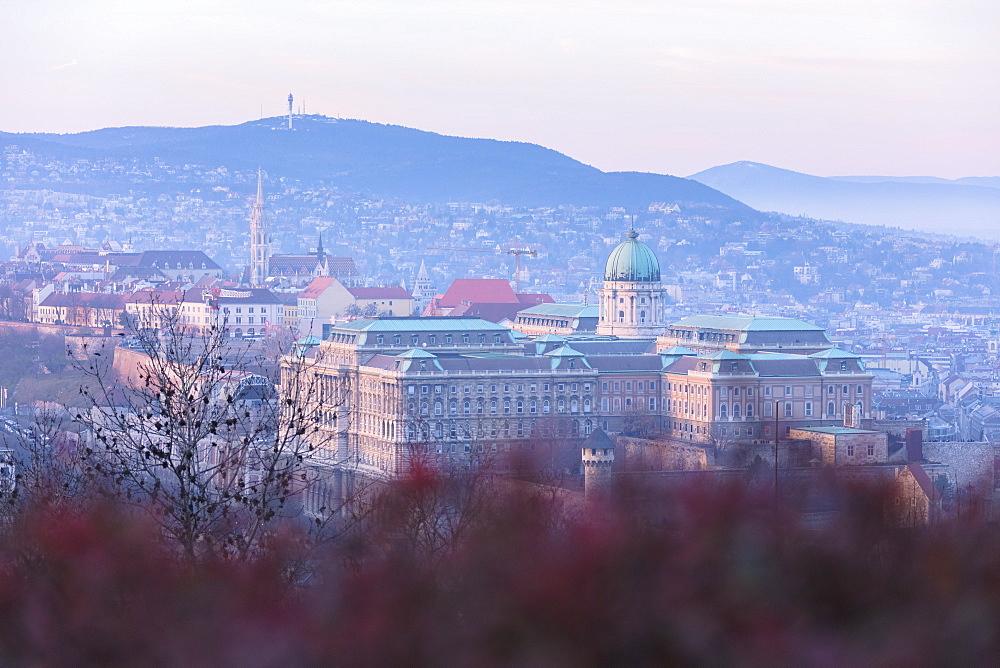 Buda Castle, Budapest, Hungary, Europe