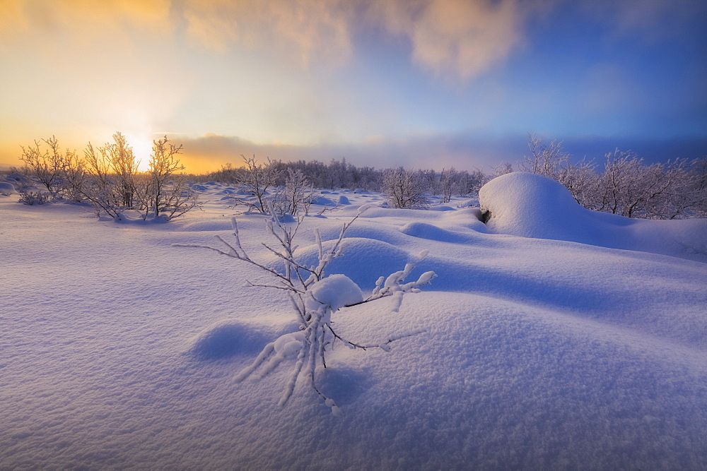 Sunset on the forest covered with snow, Muonio, Lapland, Finland