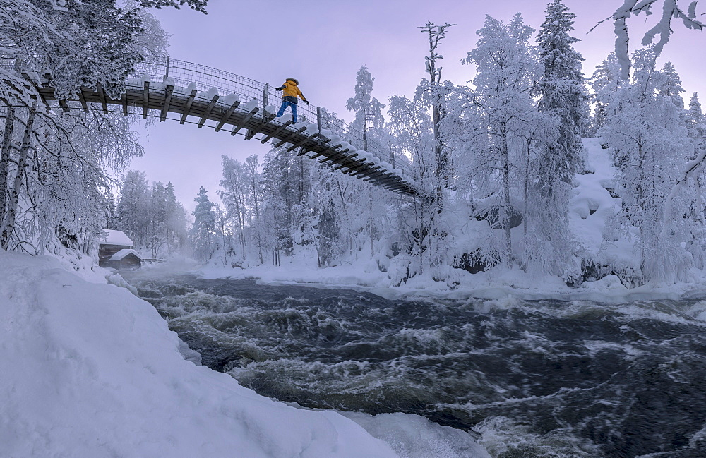 Hiker on suspension bridge above Myllykoski rapids, Juuma, Oulanka National Park, Kuusamo, Lapland, Finland