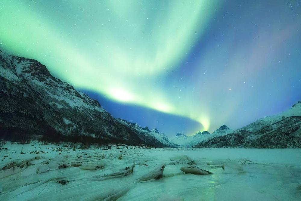 Northern Lights (Aurora borealis) on frozen sea, Olderfjorden, Svolvaer, Lofoten Islands, Nordland, Norway, Europe