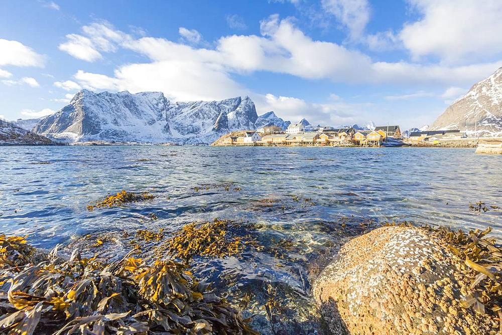 Fishing village of Sakrisoy, Lofoten Islands, Nordland, Norway, Europe
