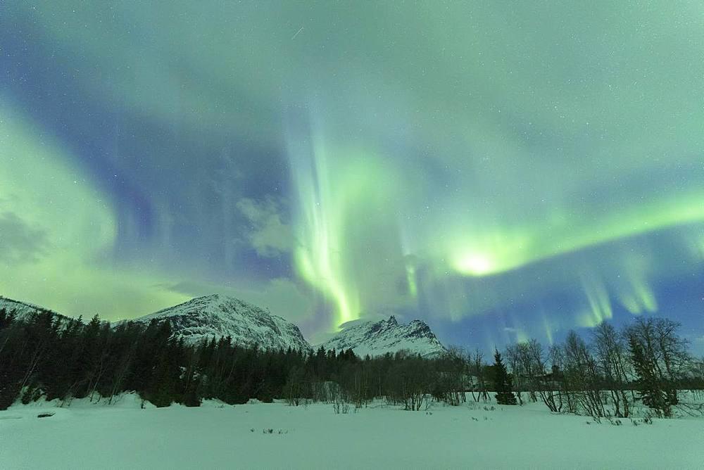 Northern Lights (Aurora borealis), Skoddebergvatnet, Grovfjord, Troms county, Lofoten Islands, Nordland, Norway, Europe - 1179-3353
