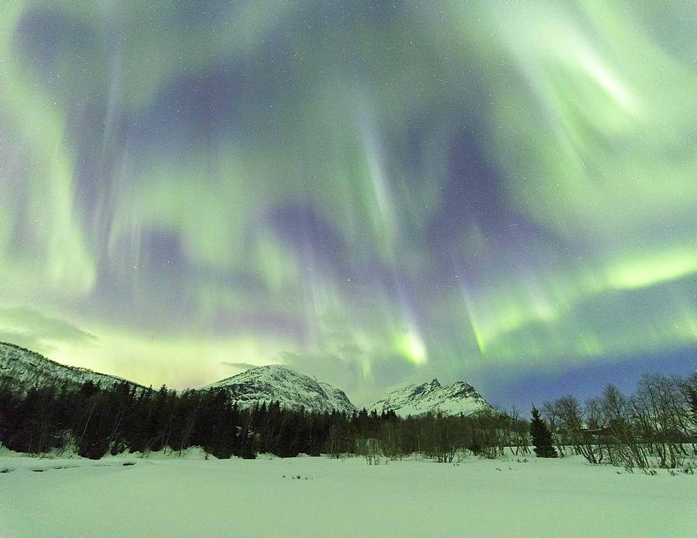 Panoramic of Northern Lights (Aurora borealis), Skoddebergvatnet, Grovfjord, Troms county, Lofoten Islands, Nordland, Norway, Europe - 1179-3355