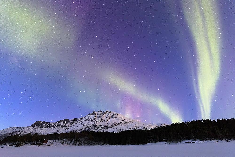 Northern Lights (Aurora borealis), Skoddebergvatnet, Grovfjord, Troms county, Lofoten Islands, Nordland, Norway, Europe - 1179-3362