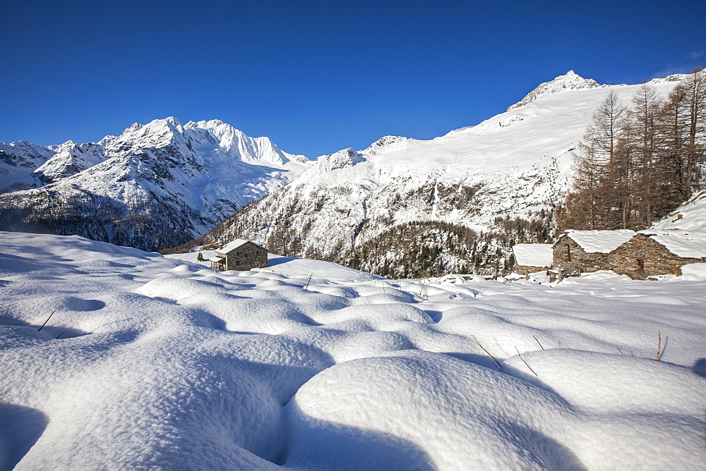 Huts in the snow with Monte Disgrazia on background, Alpe dell'Oro, Valmalenco, Valtellina, Sondrio province, Lombardy, Italy, Europe