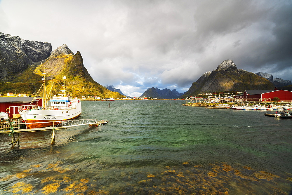 Fishing boats in the harbor, Reine, Nordland, Lofoten Islands, Norway