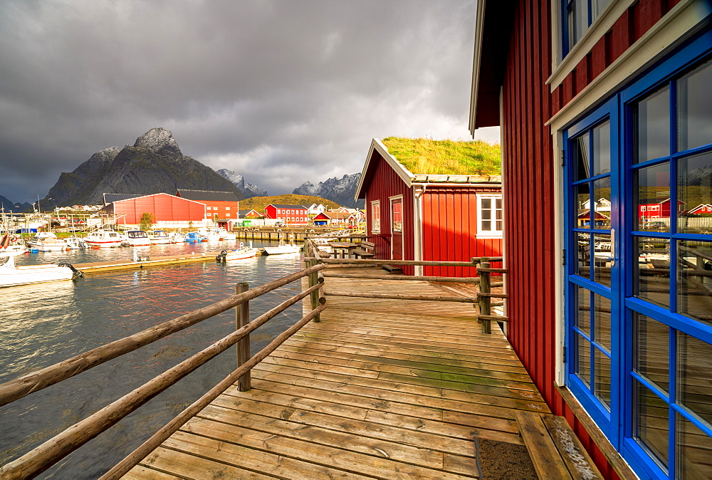 Harbor and typical fishermen's houses with grass roof, Reine, Nordland, Lofoten Islands, Norway, Europe