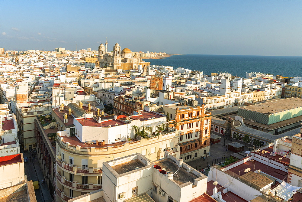 Buildings of the old town and Santa Cruz Cathedral seen from Torre Tavira, Cadiz, Andalusia, Spain