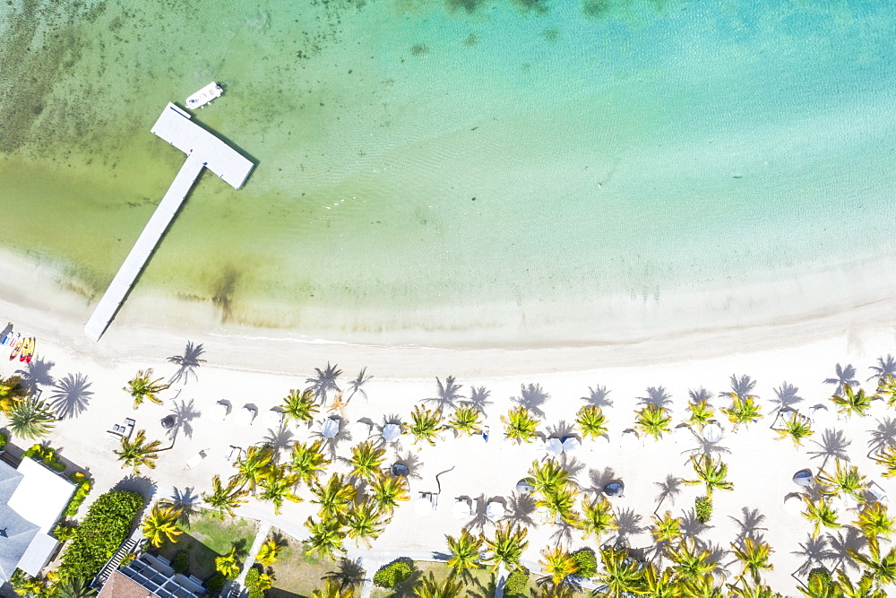 Aerial view by drone of beach umbrellas on tropical palm-fringed beach washed by Caribbean Sea, Antilles, West Indies, Caribbean, Central America
