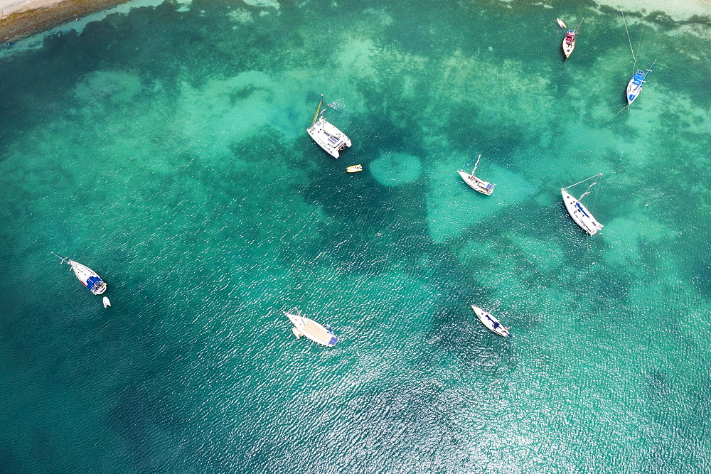 Aerial view by drone of sailboats and catamarans moored in the Caribbean Sea, Antilles, West Indies, Caribbean, Central America