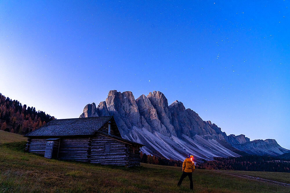 Man admiring stars over the Odle out of wood hut at Gampen Alm, Funes Valley, Dolomites, Bolzano province, South Tyrol, Italy