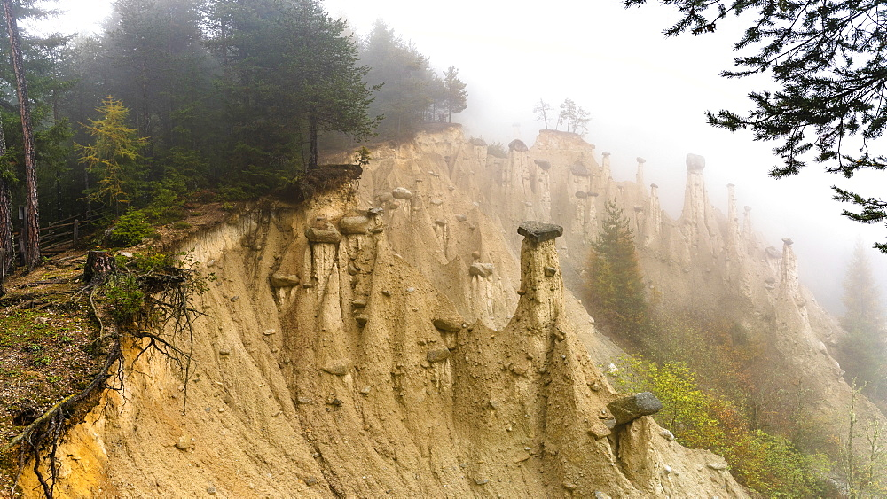 Earth Pyramids and woods in the autumn mist, Perca (Percha), province of Bolzano, South Tyrol, Italy, Europe